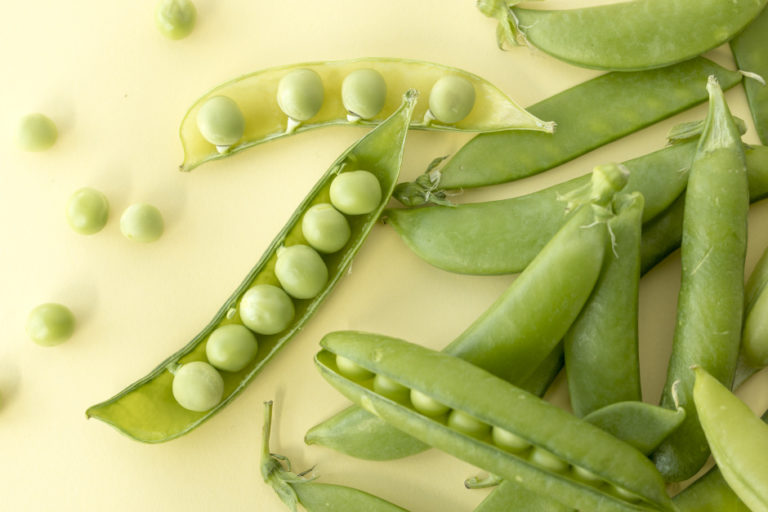 """""""The Vegetable of Spring, Peas"""""""