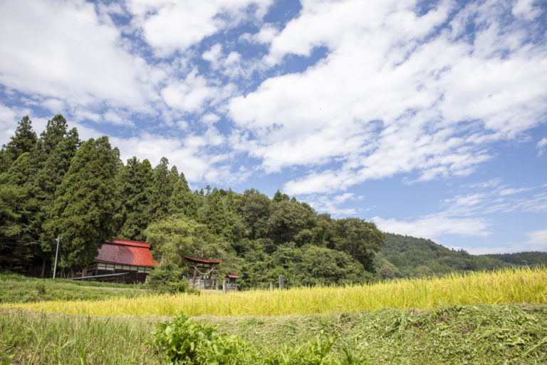 Sharing Delicious Iizuna Town Products Throughout Japan—Ideas for Future Food and Farming