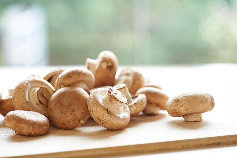 """""""Mushrooms—the Taste of Autumn"""""""