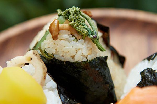 茸(きのこ)と山菜の炊き込み御飯
