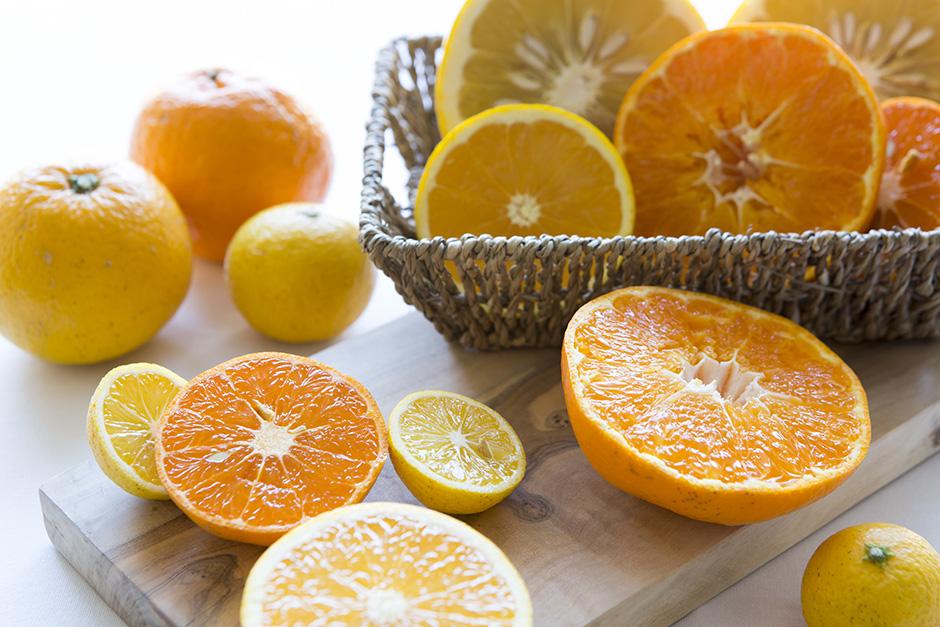 「春の果実 柑橘」