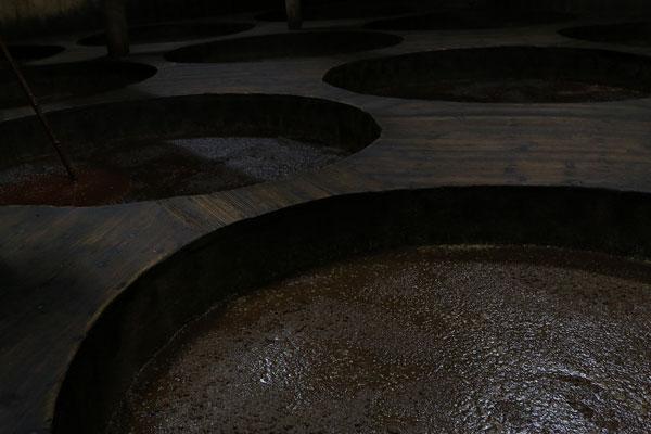 醤油発酵写真
