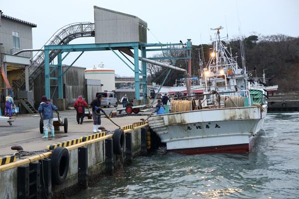 橋立漁港写真