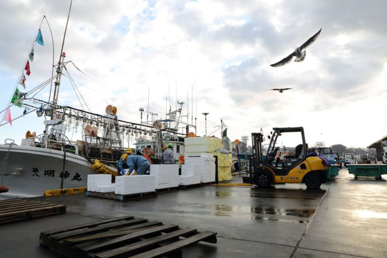 港都八戶所孕育的鯖魚飲食文化