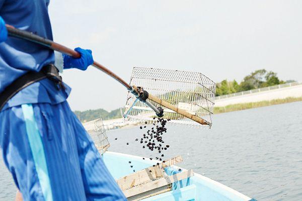 しじみ漁写真