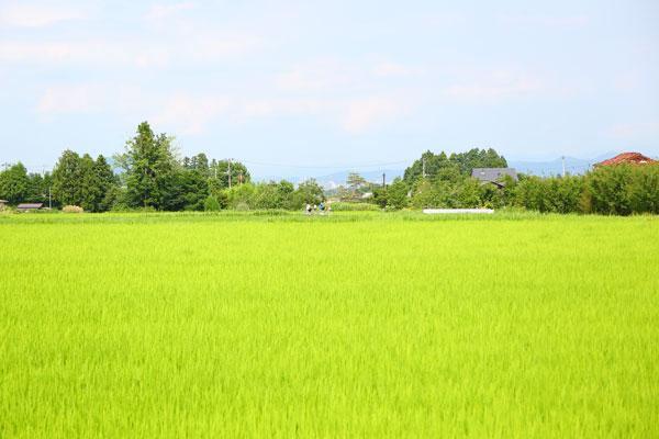 阿武隈写真
