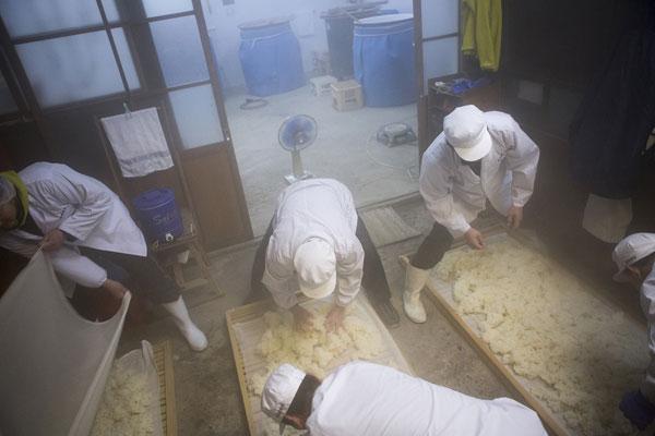 蒸米~米さらし写真