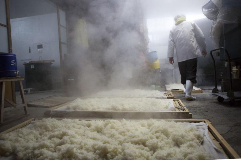 冉冉升起的白色蒸氣,是釀酒師們熱血沸騰的證明