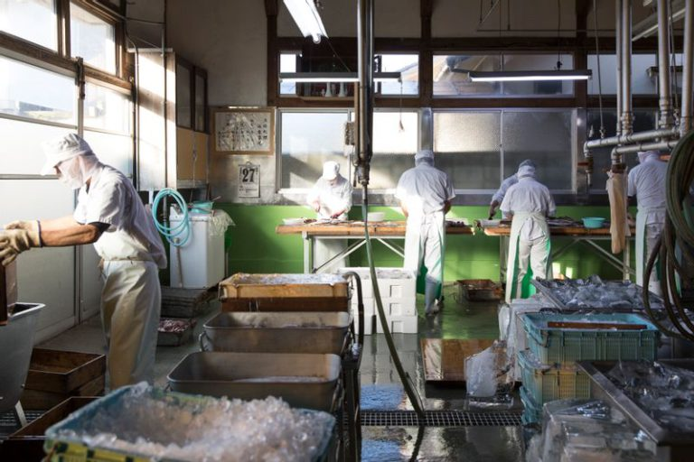 仙崎蒲鉾製造風景