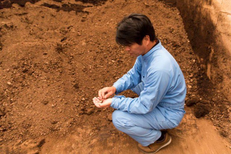 飼料用米の肥料として使われる長州黒かしわの鶏ふん