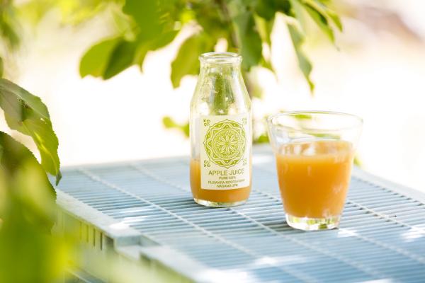 Fujiwararootsfarmのりんごジュース
