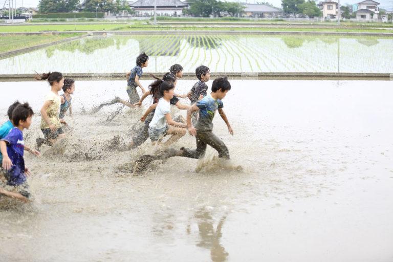老舗の米屋が提案する新しい米食文化