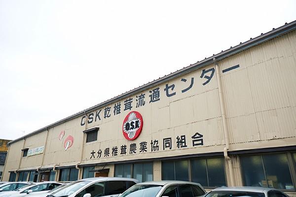 大分県椎茸農業協同組合(オーエスケー)写真
